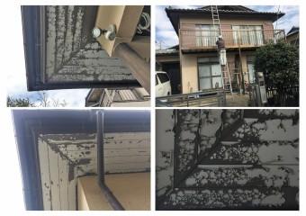 埼玉県川越市屋根外壁点検