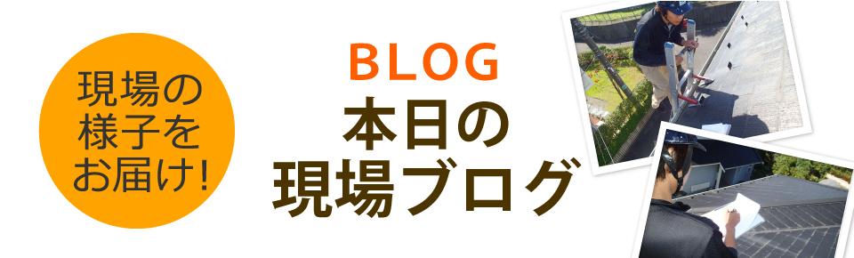 川越市、狭山市、所沢市エリア、その他地域のブログ